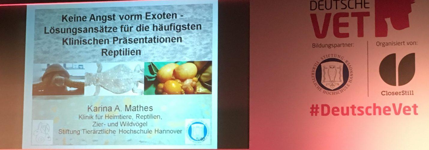Köln 13.05.2017 – Keine Angst vor Exoten – Lösungsansätze für die häufigsten Klinischen Präsentationen (Reptilien und Amphibien)