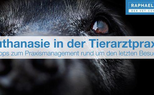 Euthanasie in der Tierarztpraxis – Tipps zum Praxismanagement rund um den letzten Besuch