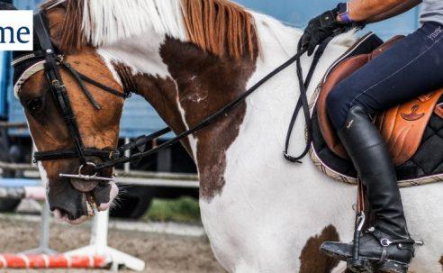 Ein Beitrag für mehr Tierschutz – die Neuerungen der LPO 2018
